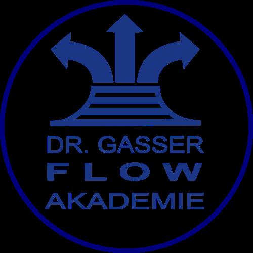Flow-Akademie